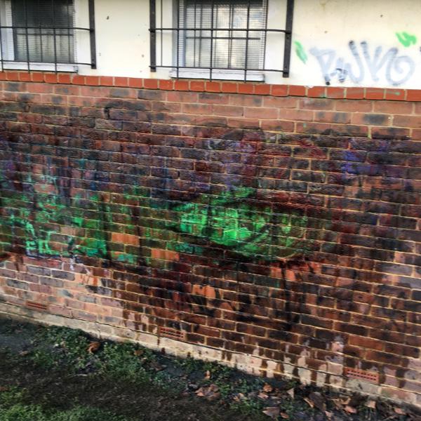 Bare Face Graffiti Remover